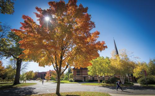 Fall on the Bethany campus brings lots of color