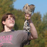 Zeffie Woods releasing a Cooper's Hawk