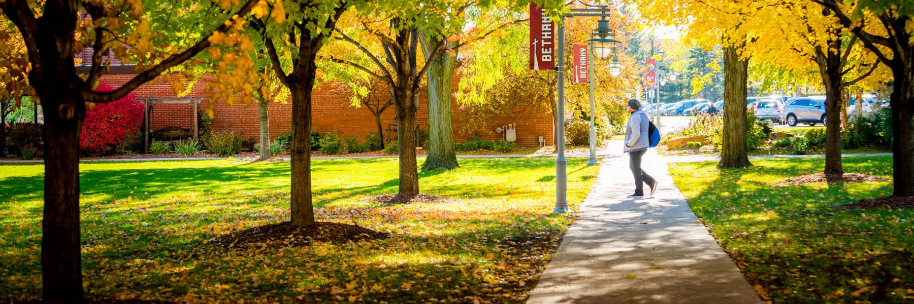 Student walking on sidewalk among trees in fall