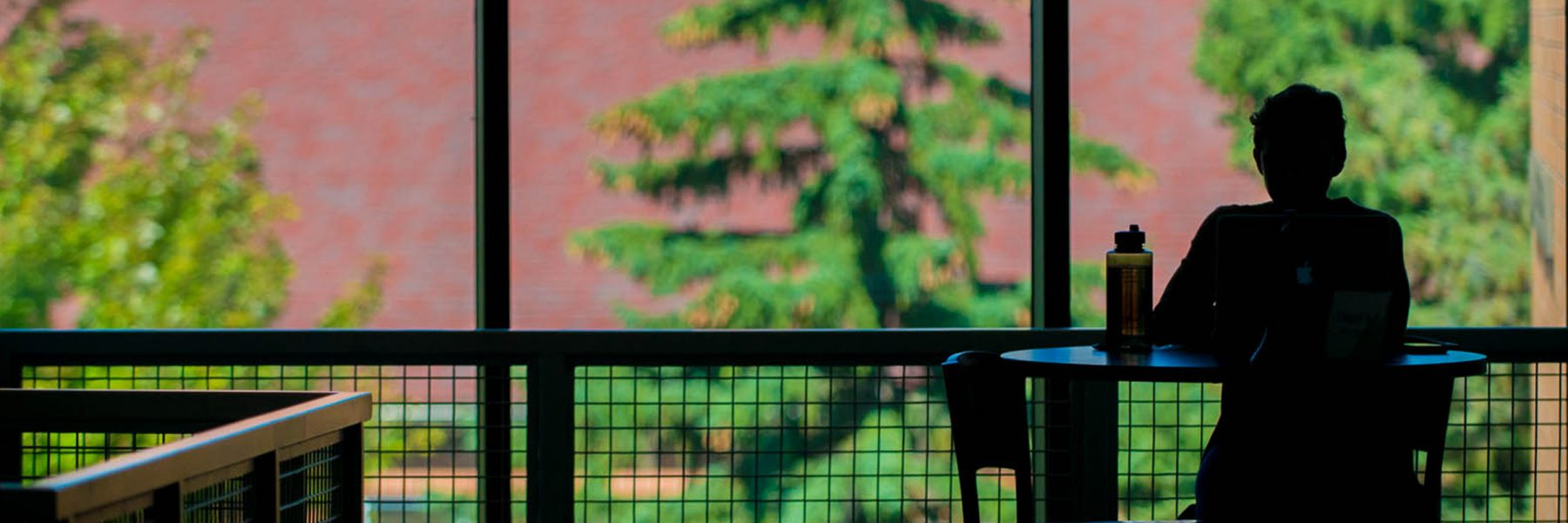 Student studying silhouette in North Lantern of Honsey Hall