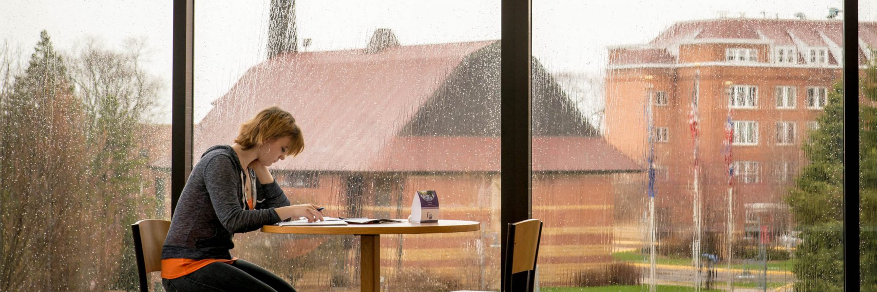 Student studying in North Lantern of Honsey Hall on a rainy day