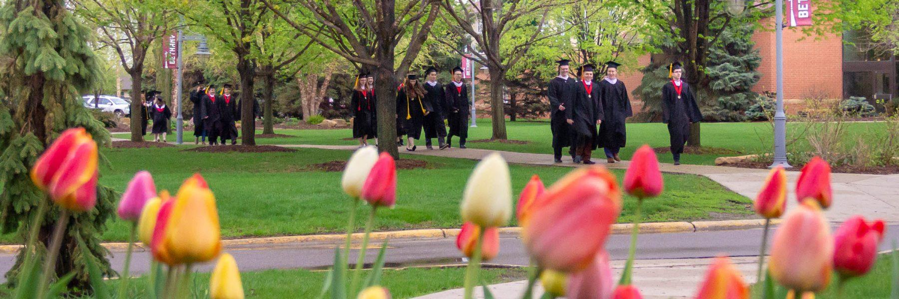 Graduates walking across campus before commencement