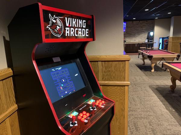 Viking Arcade retro style video game